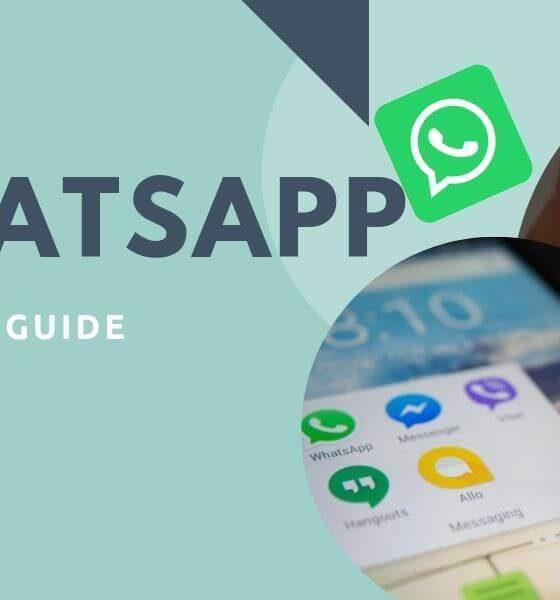 Whatsapp Basic Tips