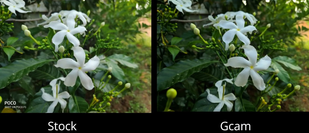 POCO F1 Google Camera Potrait Stock Vs Gcam apk sample